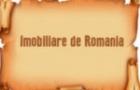 Imobiliare de Romania. Episodul 2: (Ne)profesionistii